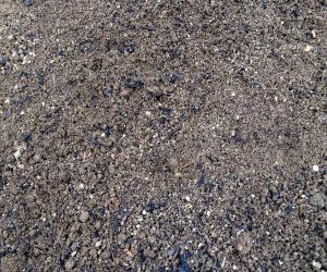 screened topsoil.jpg